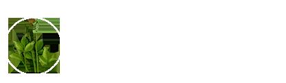 雷泽贝博官方入口|贝博官网|贝博研究所