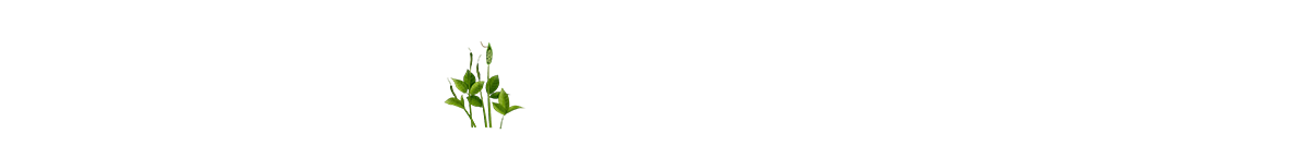 菏泽雷泽贝博官方入口|贝博官网|贝博研究所
