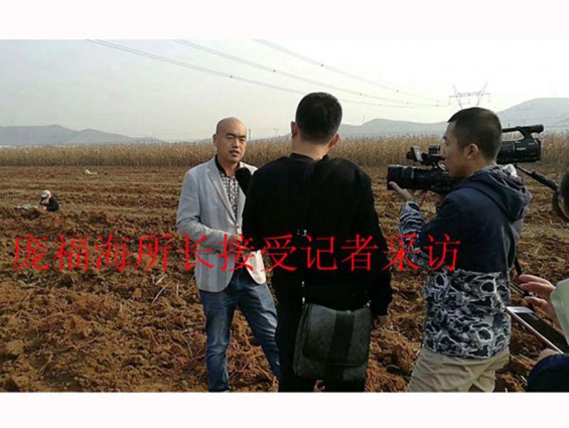 菏泽市贝博官方入口|贝博官网|贝博研究所所长庞福海接受记者采访